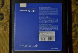 V01 (3)
